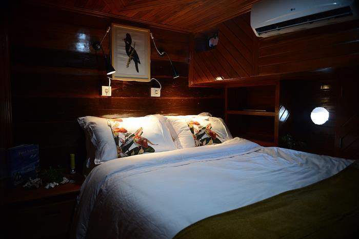 Twin/Double Cabin